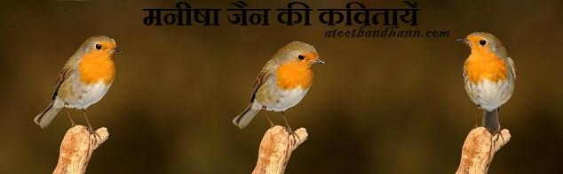 मनीषा जैन की कवितायें